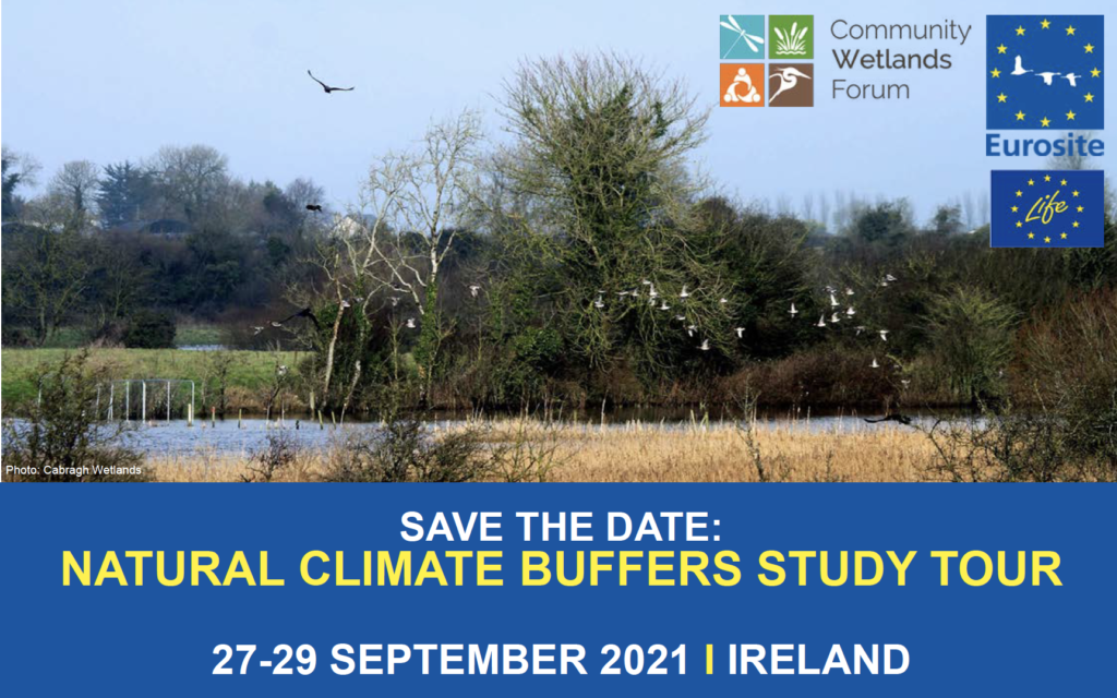 Savethedate_NCBSTIreland